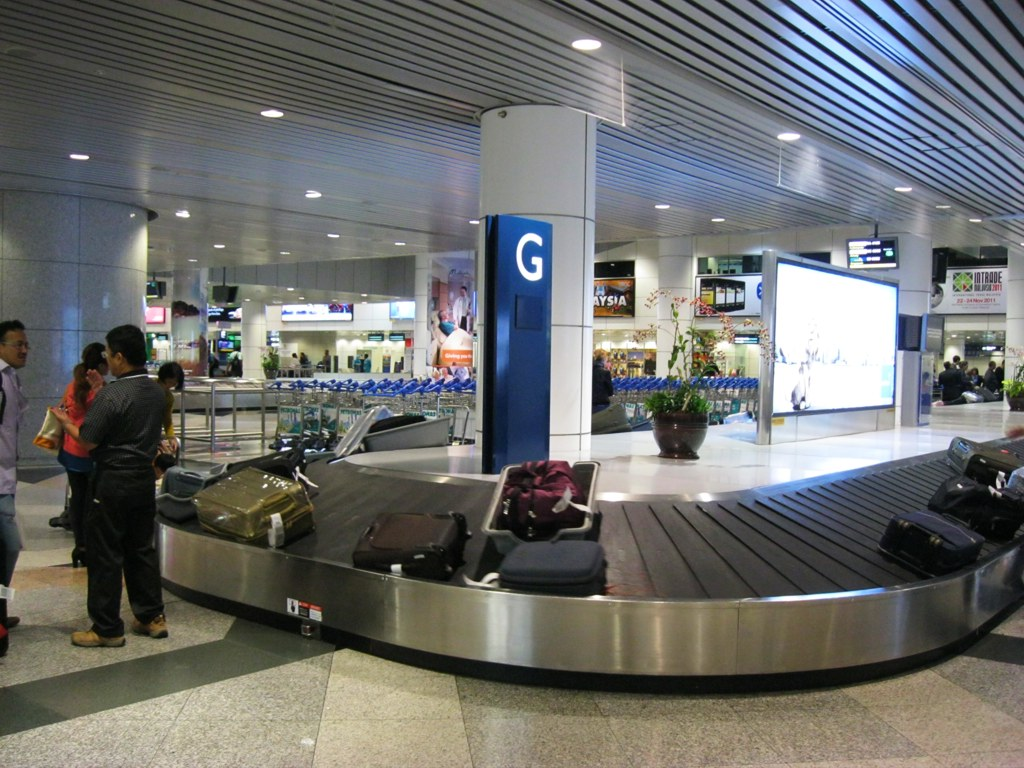сколько времени занимает получение багажа в аэропорту карта курская область онлайн спутник