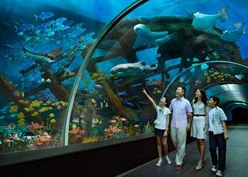 Гигантский аквариум Сингапура