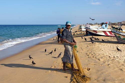 Рыбак на берегу, Джафна
