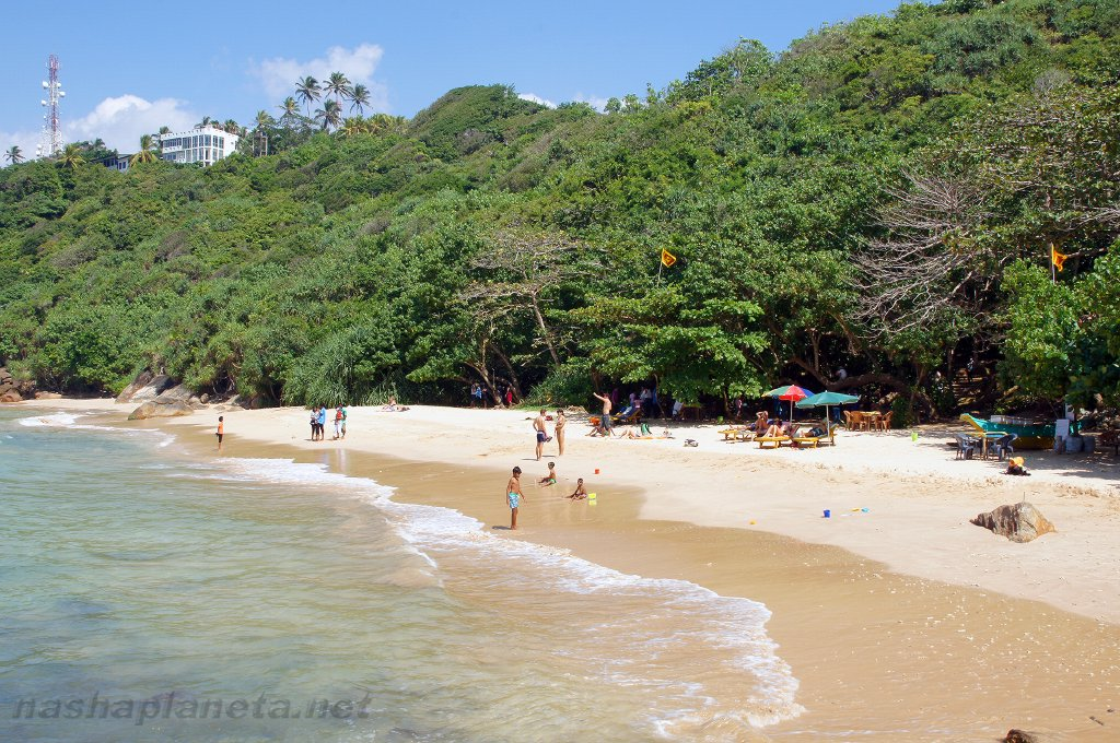 Unawatuna jungle beach sri lanka