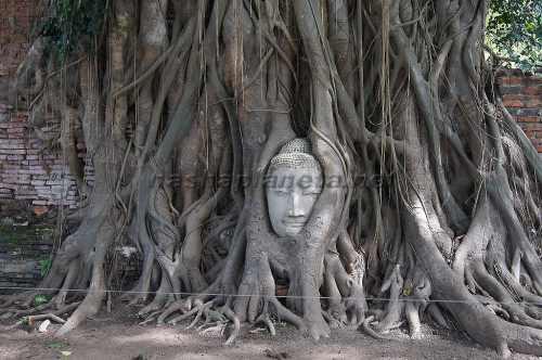 Храм Wat Phra Mahatat
