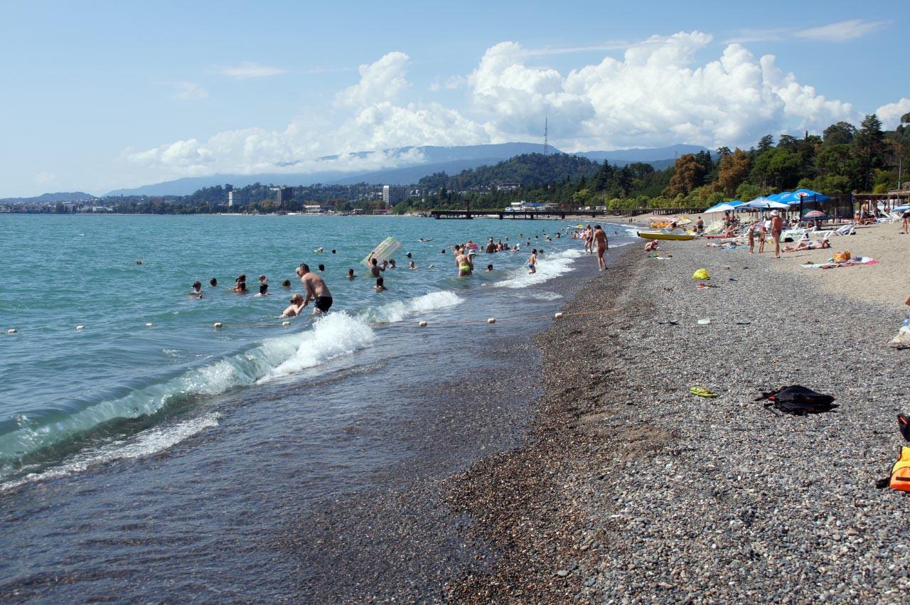 баклажаны будут фото сухуми абхазия города и пляжа отзывы перья были
