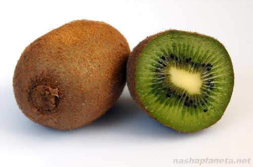 Экзотические фрукты ( фото, название, описание ). Kiwi